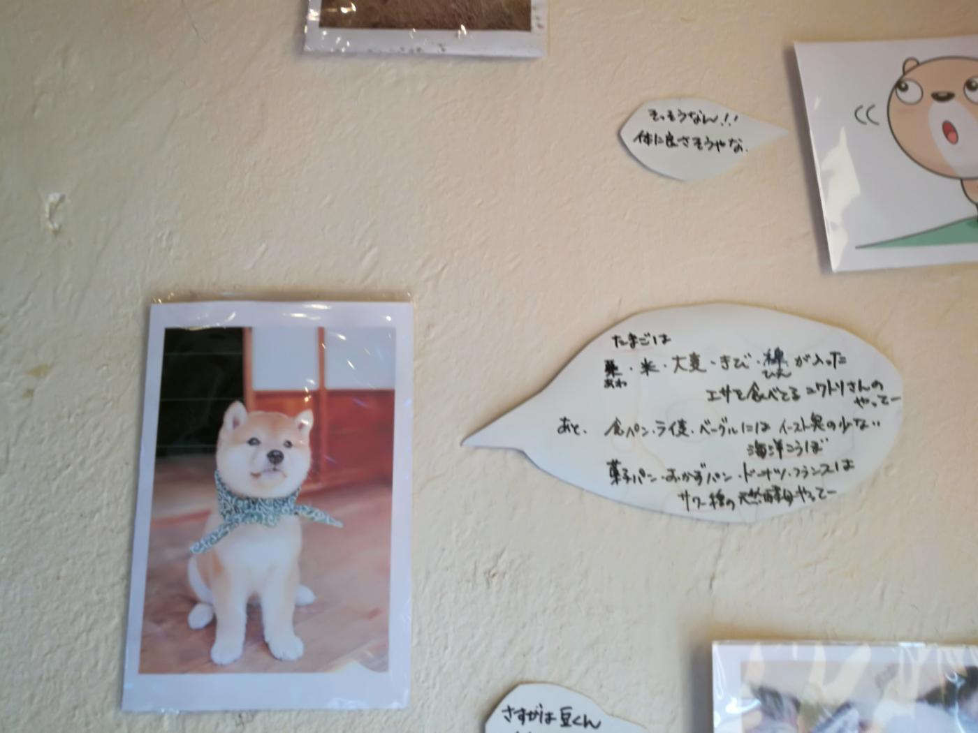 元気パン工房ごぱんの壁面写真