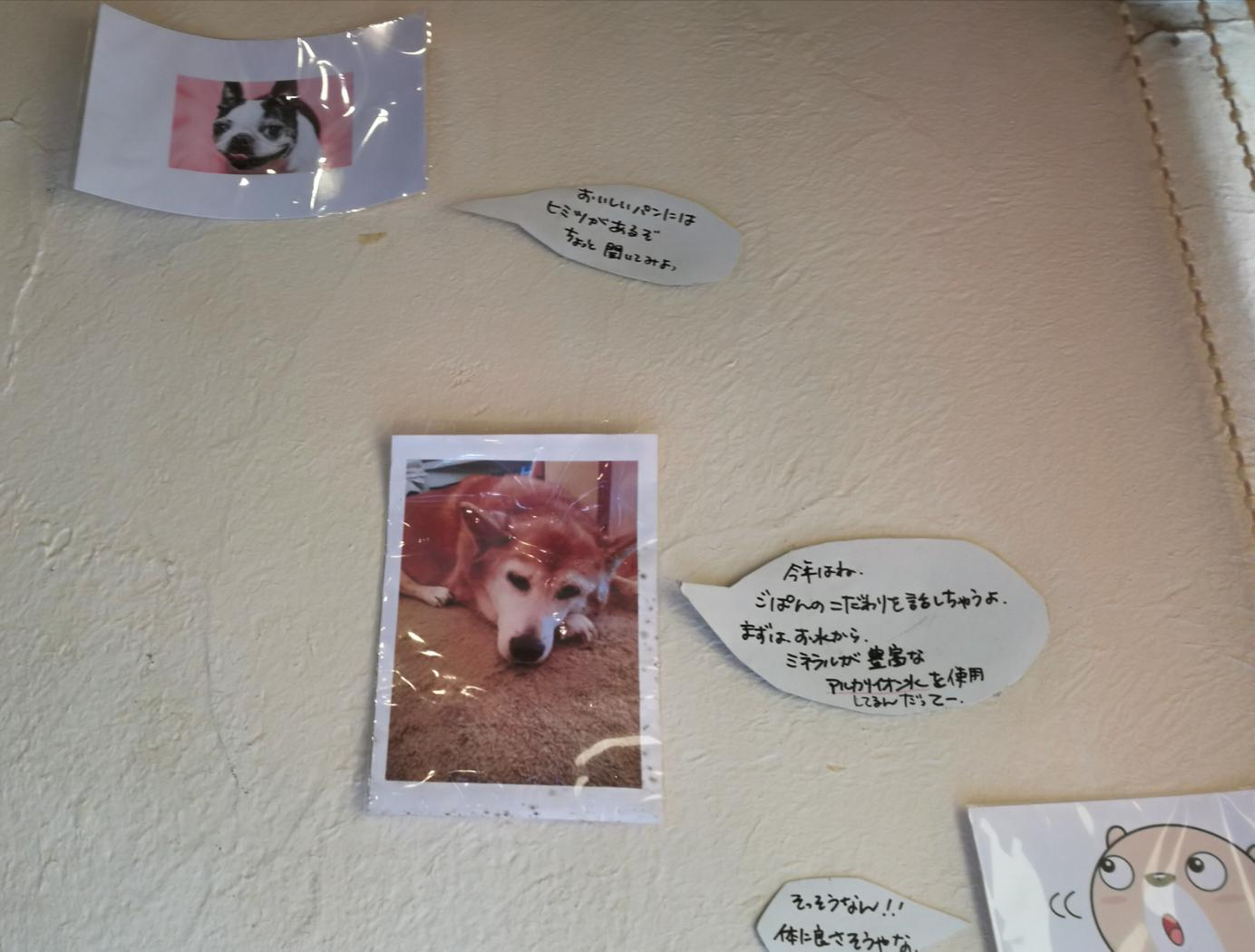 元気パン工房ごぱんの壁面に掲示されたこだわり