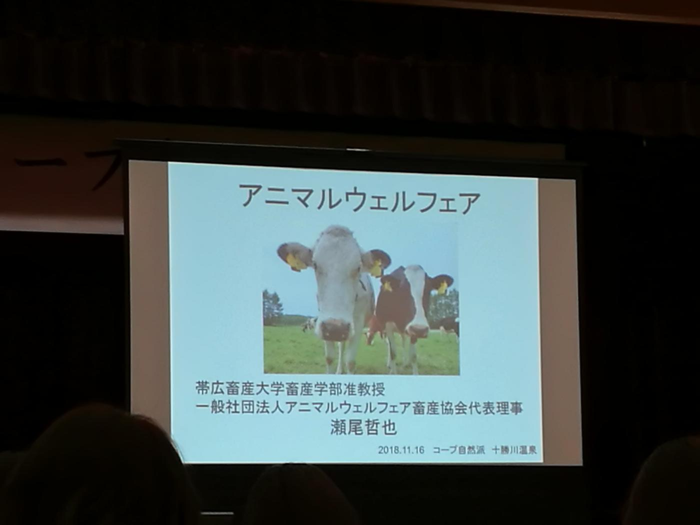 コープ自然派アンバサダーアニマルウェルフェア講義