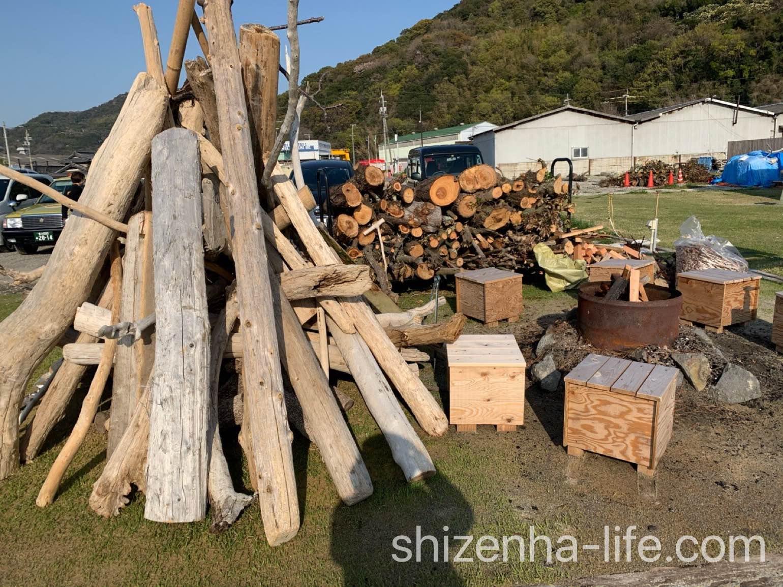 宗一郎珈琲の木のオブジェ