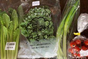 コープ自然派 若手の畑応援セット(ミニ)お届けセット野菜 4品